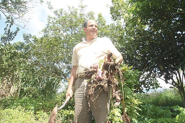 Luis Guillermo Solís, candidato presidencial del PAC, disfruta pasar tiempo en su finca y cosechar lo que cultiva