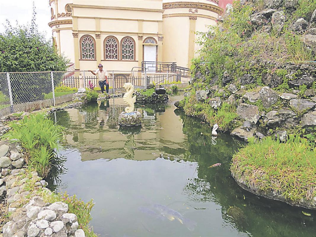 Diario extra tiene 16 a os de chinear los jardines de la for Peces de pileta