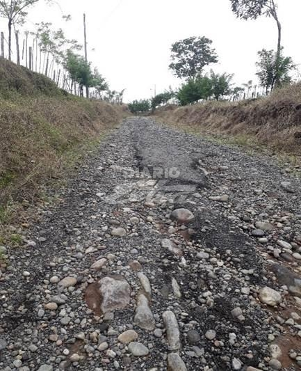 Ruta de Guácimo recibirá inversión de ¢300 mills. - Diario Extra Costa Rica