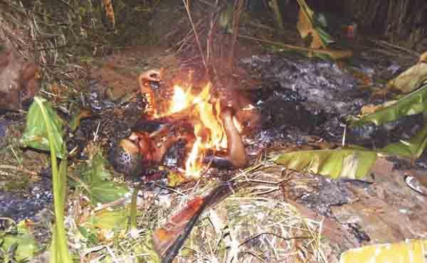 Fotos de narcos asesinados 3