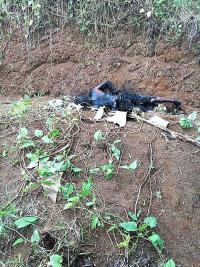 El cuerpo estaba en el caño de una finca bananera, en Palo Verde de Cariari, Pococí
