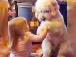 Headley practica con su mascota