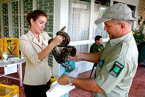 Los guardaparques se encargan de evitar que ingresen las mascotas
