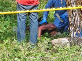 Menocal tenía una herida de arma blanca desde la oreja hasta la papada
