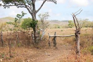 Abertura en frontera para pasos ilegales
