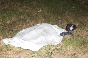 El cuerpo de Montenegro quedó a un lado de la carretera tras impactar contra el poste
