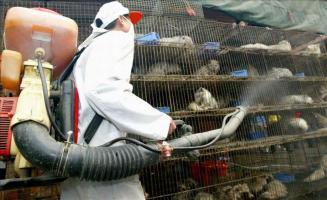 Un trabajador desinfecta jaulas con animales en la localidad de Guangzhou, capital de la provincia del mismo nombre