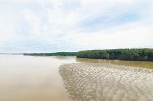 La poca corriente del río Tempisque, refleja lo que sucede en esa zona del país debido al fenómeno de El Niño