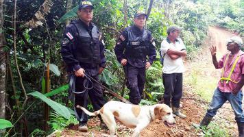 La Unidad Canina del Ministerio de Seguridad Pública se unió a la búsqueda