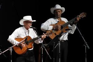 El espectáculo estuvo a cargo de más de 20 artistas populares procedentes de Acosta, Escazú, Puriscal, San Ramón y Turrialba.