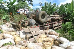 El camión no pudo subir una cuesta y terminó en el fondo de un guindo de 8 metros