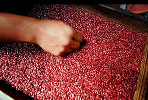 """Nos preocupa que tengamos que desembolsar más dinero para adquirir este alimento de la canasta básica"", dijo Erick Ulate, presidente de Consumidores de Costa Rica"